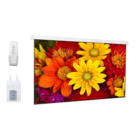 "DP Motorized/Electric Projection Screen 151""D (73.1"" x 131.6"")"